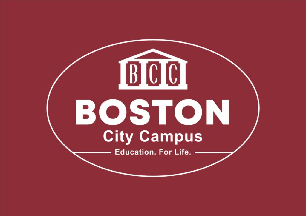Boston Institution Logo