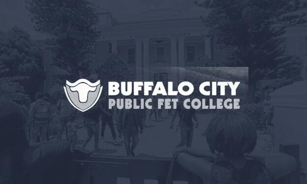 buffalo city Splash Image 1